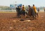В Казахстане ежегодно проводятся соревнования по кокпару